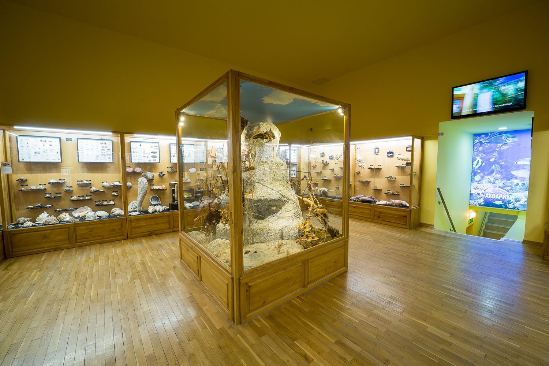 Regional Natural History Museum